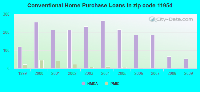Conventional Home Purchase Loans in zip code 11954