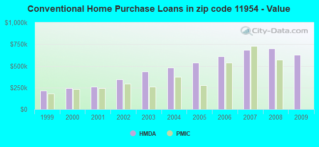 Conventional Home Purchase Loans in zip code 11954 - Value