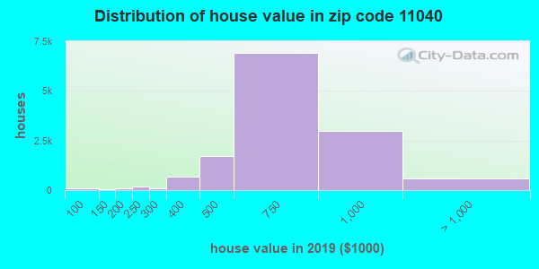 Zip code 11040 house/condo values in 2010