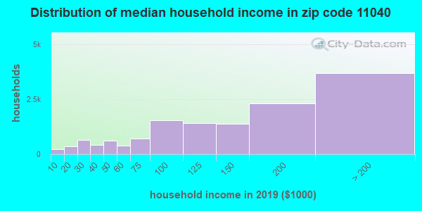 Zip code 11040 household income distribution in 2009