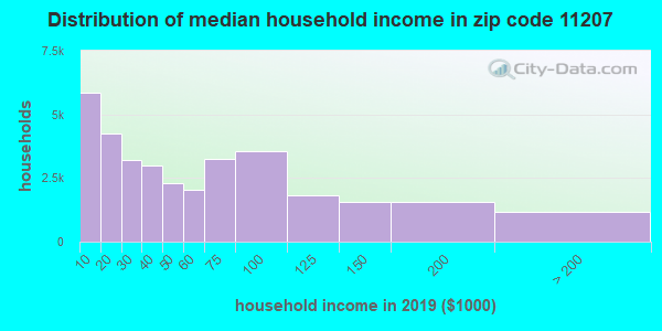 Zip code 11207 household income distribution in 2009