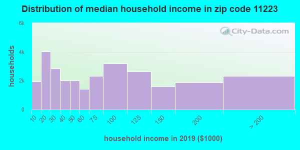 Zip code 11223 household income distribution in 2009