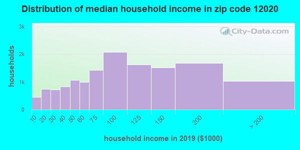 Zip code 12020 household income distribution in 2009