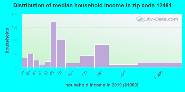 Zip code 12481 household income distribution in 2009