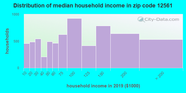 Zip code 12561 household income distribution in 2009