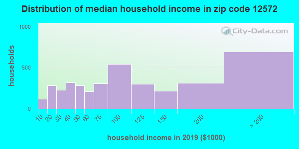 Zip code 12572 household income distribution in 2009