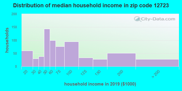 Zip code 12723 household income distribution in 2009