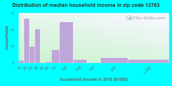 Zip code 12763 household income distribution in 2009