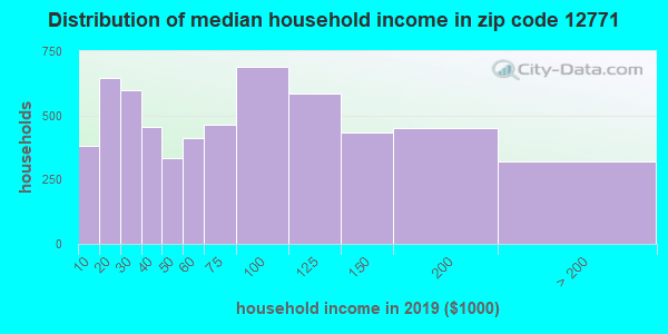 Zip code 12771 household income distribution in 2009