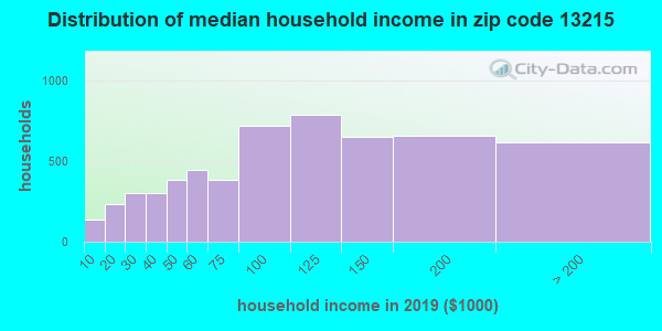 Zip code 13215 household income distribution in 2009
