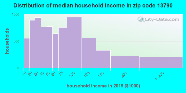 Zip code 13790 household income distribution in 2009