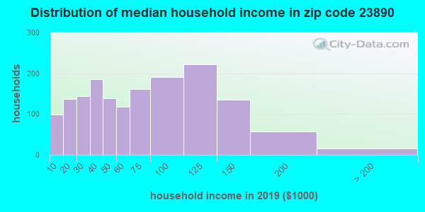 Zip code 23890 household income distribution in 2009