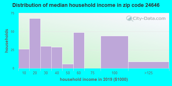 Zip code 24646 household income distribution in 2009