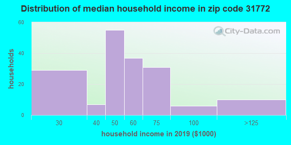 Zip code 31772 household income distribution in 2009