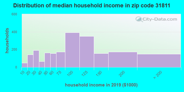 Zip code 31811 household income distribution in 2009