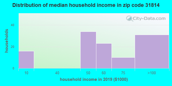 Zip code 31814 household income distribution in 2009