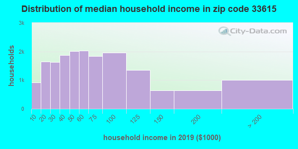 Zip code 33615 household income distribution in 2009