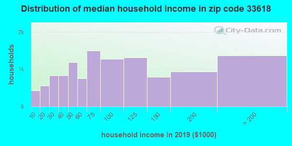 Zip code 33618 household income distribution in 2009
