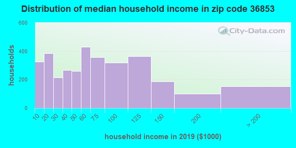 Zip code 36853 household income distribution in 2009
