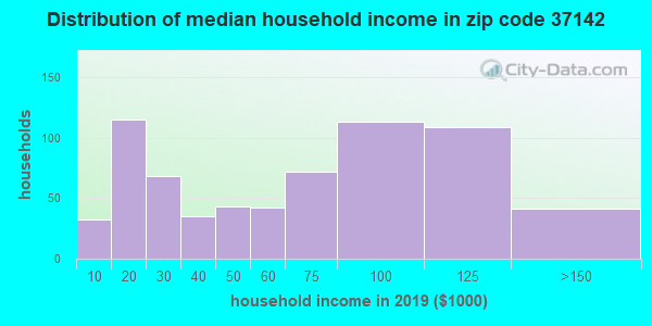 Zip code 37142 household income distribution in 2009