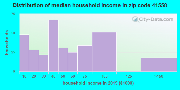 Zip code 41558 household income distribution in 2009