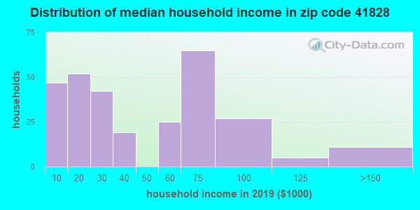 Zip code 41828 household income distribution in 2009