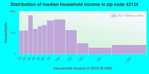 Zip code 42134 household income distribution in 2009