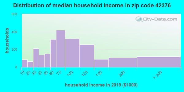 Zip code 42376 household income distribution in 2009