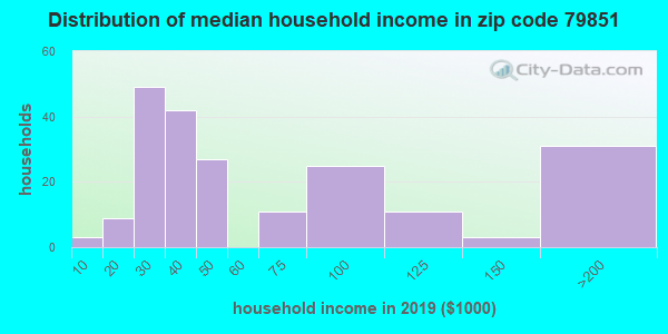 Zip code 79851 household income distribution in 2009