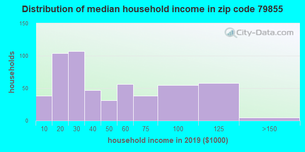 Zip code 79855 household income distribution in 2009