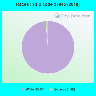 Zip code 37845 races chart