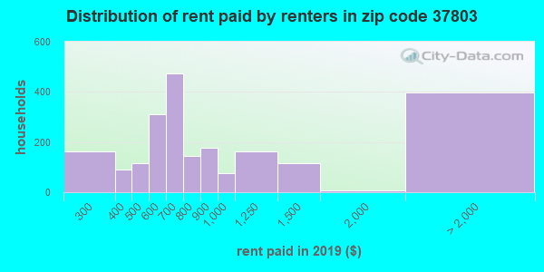 37803 rent paid by renters