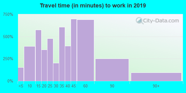 Travel time to work (commute) in zip code 06019