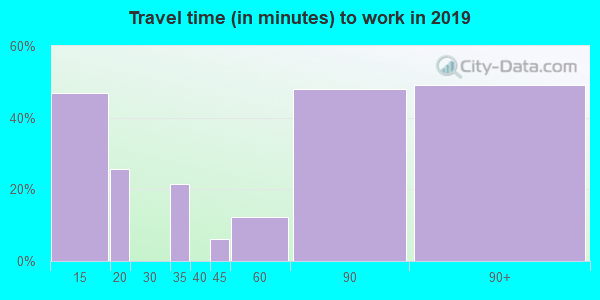 11005 zip code travel time to work (commute)