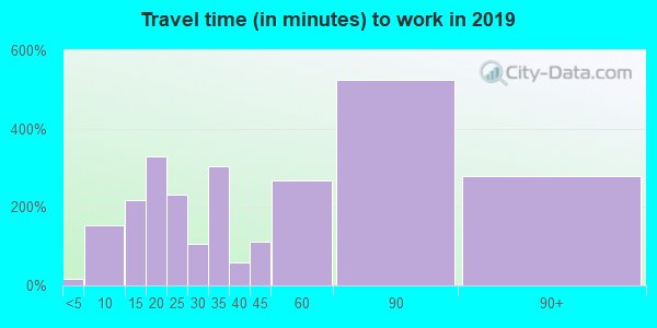 11020 zip code travel time to work (commute)