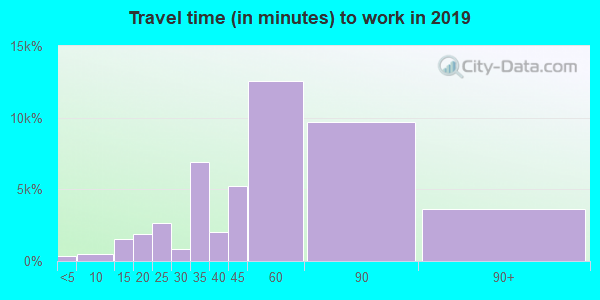 11226 zip code travel time to work (commute)