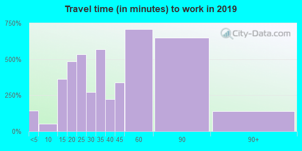 11789 zip code travel time to work (commute)