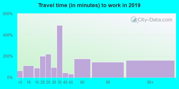 11796 zip code travel time to work (commute)
