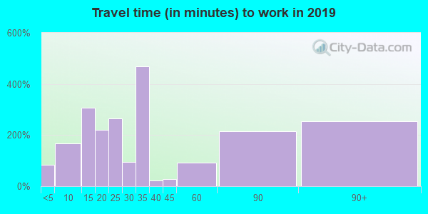 11804 zip code travel time to work (commute)