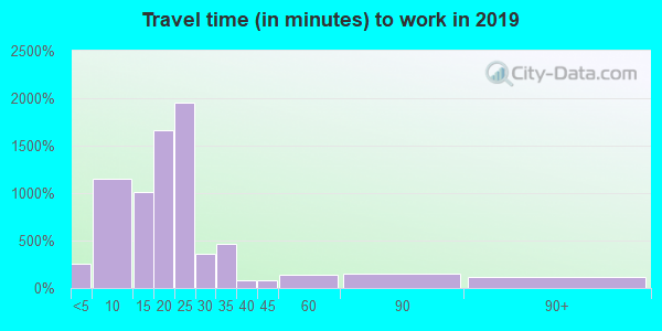 13219 zip code travel time to work (commute)
