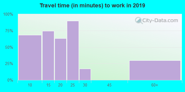 13319 zip code travel time to work (commute)