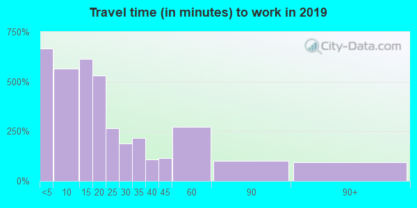 Travel time to work (commute) in zip code 13367