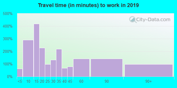 Travel time to work (commute) in zip code 13733