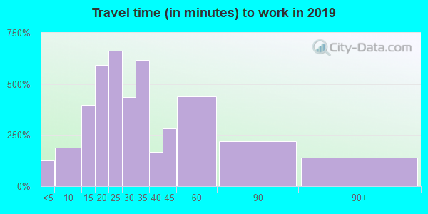 21219 zip code travel time to work (commute)