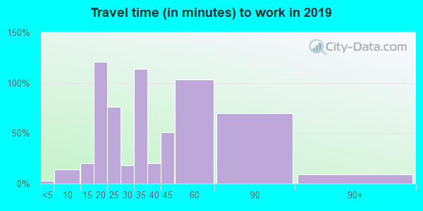 Travel time to work (commute) in zip code 22125