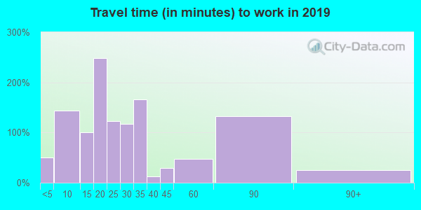 Travel time to work (commute) in zip code 23944