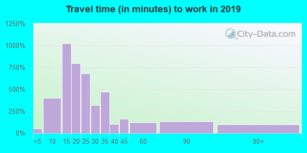 Travel time to work (commute) in zip code 28204