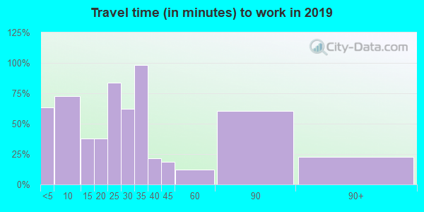 29009 zip code travel time to work (commute)