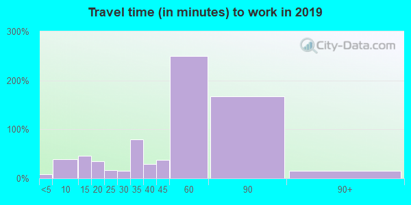 29137 zip code travel time to work (commute)