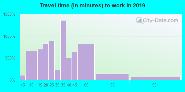 29569 zip code travel time to work (commute)